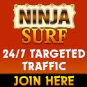 ninjasurf