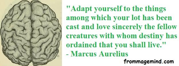 2020 05 22 Marcus Aurelius 7